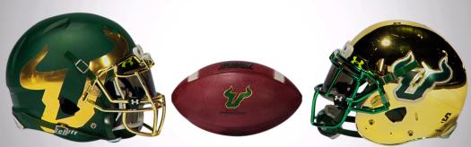 2015 USF Football