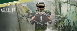 USF Football 2015 #BullsUnite Raymond James Facebook Cover Image II by Matthew Manuri (3568x1462)