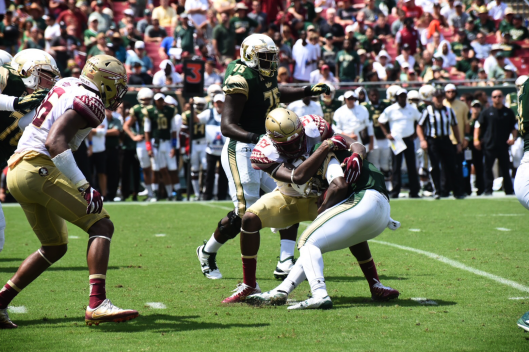 FSU vs. USF Final Score 55-35 Article Image 2016 | SoFloBulls.com (1620x1080) by Dennis Akers