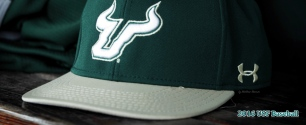 2016 USF Baseball Hat on Wood Facebook Cover Photo 99% by Matthew Manuri (3568×1462