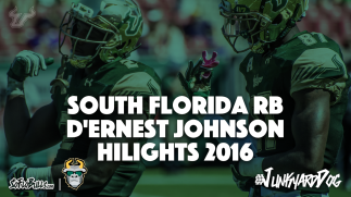 #JunkyardDog South Florida RB D'Ernest Johnson Highlights 2016 Article Photo | SoFloBulls.com