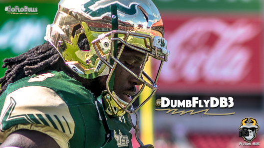 🎥 SoFloBulls.com 2016 USF Football Highlights Series: #DumflyDB3 DB Deatrick Nichols