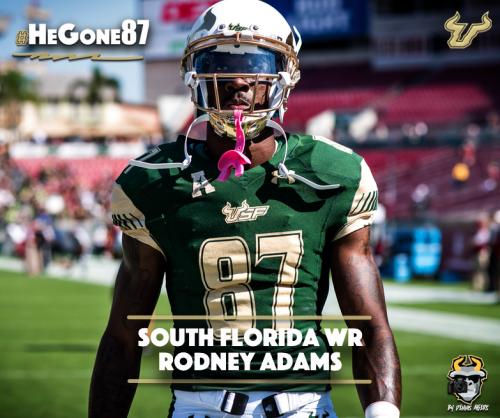 🎥 SoFloBulls.com 2016 USF Football Highlights Series: #HeGone87 WR Rodney Adams Facebook Article Image by Matthew Manuri | SoFloBulls.com (783x656)