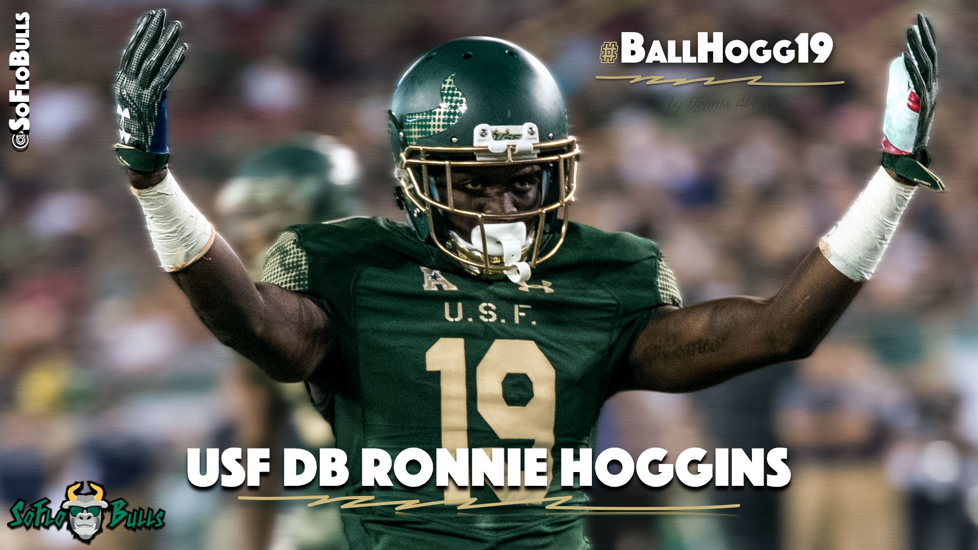 🎥 SoFloBulls.com 2016 USF Football Highlights Series: #BallHogg19 DB Ronnie Hoggins by Matthew Manuri