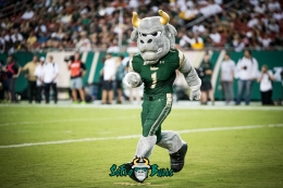 46 - Illinois vs. USF 2017 - USF Mascot Rocky the Bull by Dennis Akers | SoFloBulls.com (5773x3854)