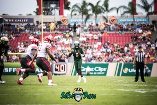 19 - USF vs. Houston 2017 - USF QB Quinton Flowers by Dennis Akers | SoFloBulls.com (6016x4016)